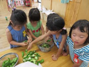 夏休みの幼稚園。