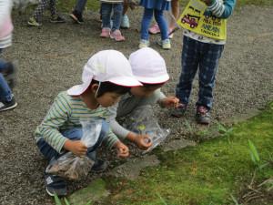 養浩館と御泉水公園に行ってきました!